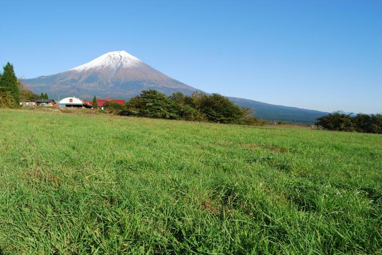 富士山YMCAグローバル・エコ・ヴィレッジ