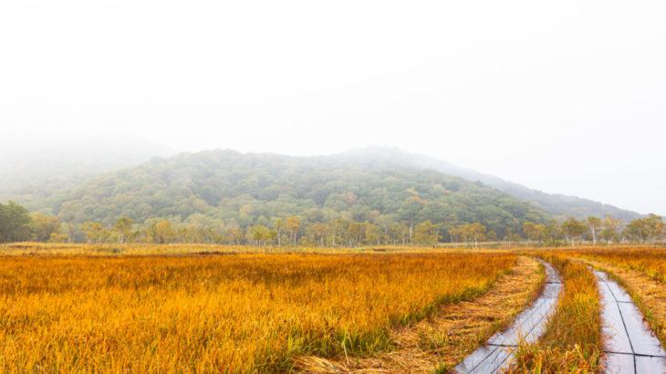 【春と秋がハイシーズン】登山初心者でも行ける尾瀬ヶ原テント泊の魅力とは!?
