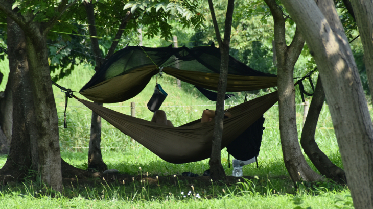 野営キャンプに挑戦