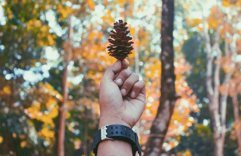 秋キャンプ、おすすめ、メリット