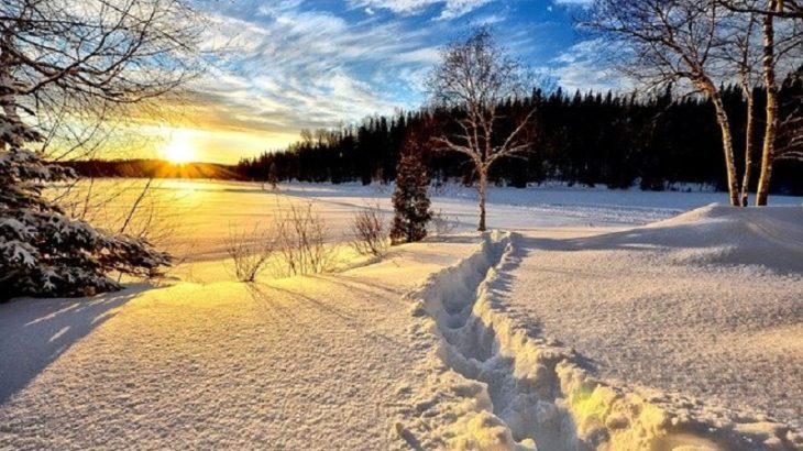 雪中キャンプ向けのソロテント選び!これを見逃すと地獄を味わう5選