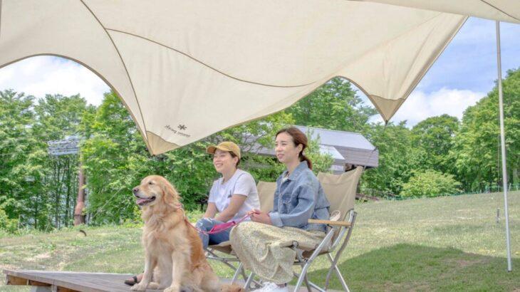 愛犬と過ごす優雅な休日!絶景ドッグテラスHAKUBA WAN!TAIN HARBOR(白馬ワン!テンハーバー)